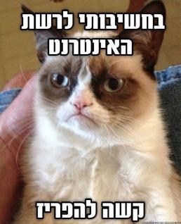grumpy meme